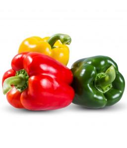 พริกหวาน (Sweet pepper)