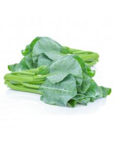 ผักคะน้า (Chinese kale)