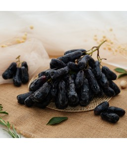 Sweet Sapphire grape